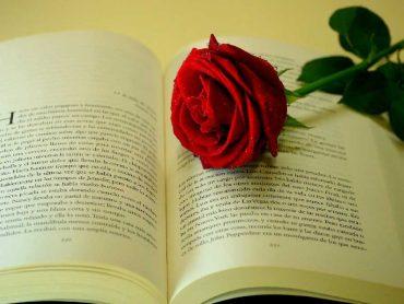 стихове за любовта