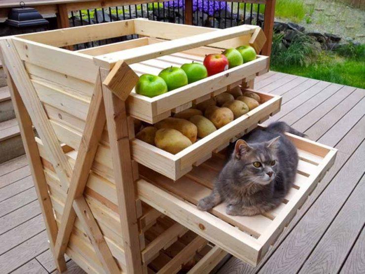 съхраняване на зеленчуци