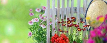 Какви цветя да засадим през пролетта